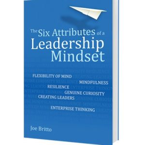 The Six Attributes of a Leaderhip Mindset 3D book cover