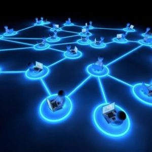 individuals working connected through a network